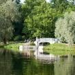gatchina-dvorcovyj-park-06