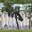 spb-kamennoostrovskij-dvorec-05