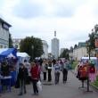 arhangelsk-letnij-yablochny-karnaval-20
