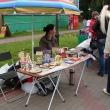 arhangelsk-letnij-yablochny-karnaval-25