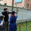 arhangelsk-letnij-yablochny-karnaval-33