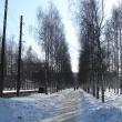arxangelsk-park-lomonosova-01
