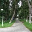 arhangelsk-petrovsky-park-22