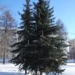 arhangelsk-petrovsky-park-10