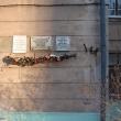 arhangelsk-troickij-162-04