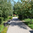 elets-gorodskoj-park-18