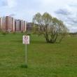 kudrovo-park-okkervil-03