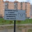 kudrovo-park-okkervil-08