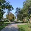 millerovo-alleya-geroev-10