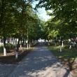 millerovo-alleya-sholohova-03