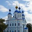 tambov-kazanskij-hram-03