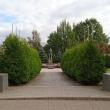 tosno-memorialnyj-kompleks-01