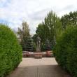 tosno-memorialnyj-kompleks-04