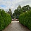 tosno-centralnyj-skver-13