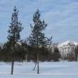 arxangelsk-naberezhnaya-severnoj-dviny-17-01