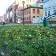 arhangelsk-chumbarovka-082012-20