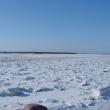 arxangelsk-reka-severnaya-dvina-08