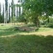 chaplygin-gorodskoj-park-04.jpg