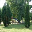 chaplygin-gorodskoj-park-08.jpg