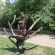 chaplygin-gorodskoj-park-10.jpg
