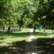 chaplygin-gorodskoj-park-12.jpg