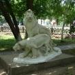 chaplygin-gorodskoj-park-13.jpg