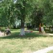 chaplygin-gorodskoj-park-15.jpg