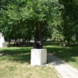 chaplygin-gorodskoj-park-18.jpg