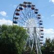 chaplygin-gorodskoj-park-20.jpg