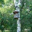 ekaterinburg-haritonovskij-park-08