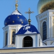 elets-voznesensky-sobor-31