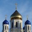 elets_voznesensky_sobor_13