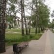 lipetsk-berezovaya-alleya-05