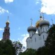 moskva-novodevichij-monastyr-26
