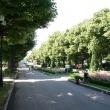 moskva-park-gorkogo-15