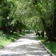 moskva-park-novodevichi-prudy-15.jpg