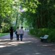 pavlovsk-pavlovskij-park-03