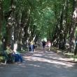 pavlovsk-pavlovskij-park-10