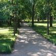 petergof-nijnij-park-07