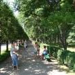 petergof-nijnij-park-18