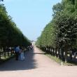 petergof-nijnij-park-24