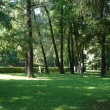 petergof-nijnij-park-25