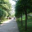 petergof-nijnij-park-32
