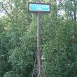 spb-1-lavrskij-most-05
