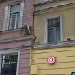 spb-koshka-vasilisa-04