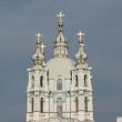 sankt-peterburg-smolnyj-monastyr-02