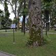 sochi-park-bestuzheva-03
