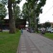 sochi-park-bestuzheva-07