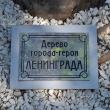 tuapse-skver-gorodov-geroev-14