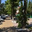 tuapse-skver-gorodov-geroev-15